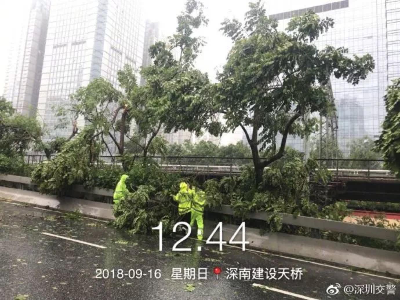 台风肆虐下的深圳人
